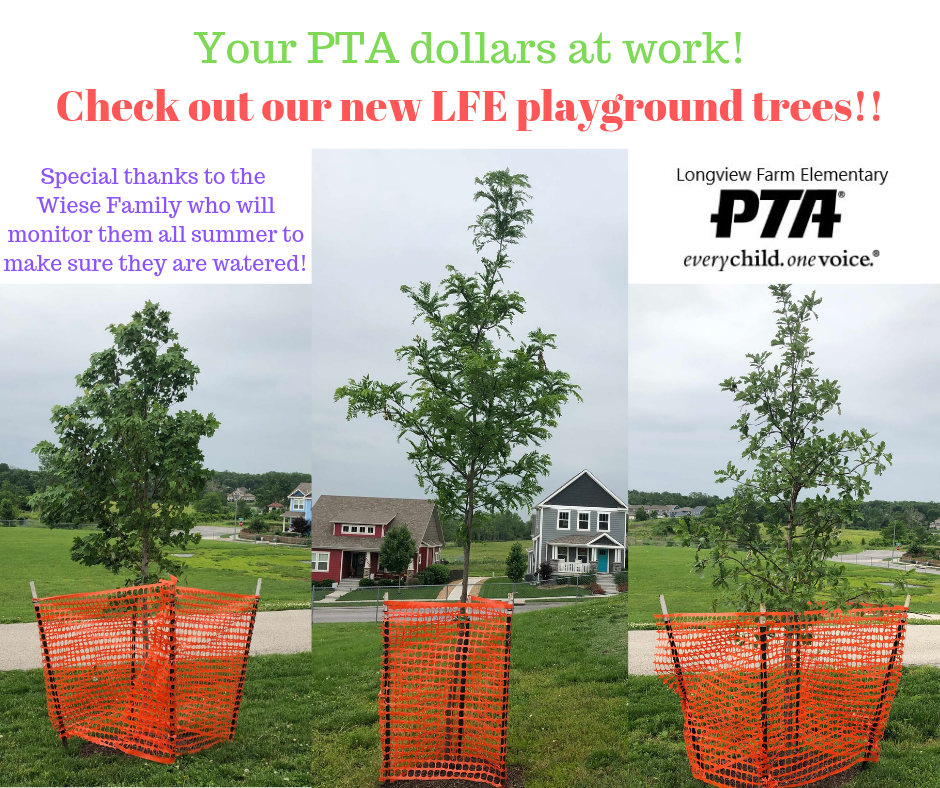 Check out our new playground trees!!.png